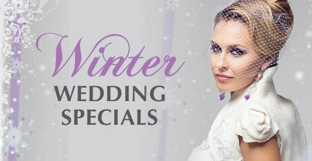 $59 Whimsical Winter Wedding!